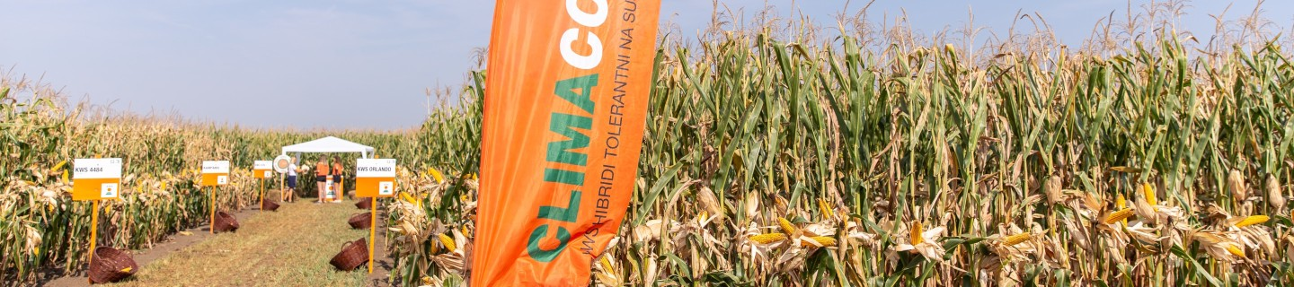 KWS-RS-ClimaControl3-Corn-Presentation-Flag-Banner.jpg